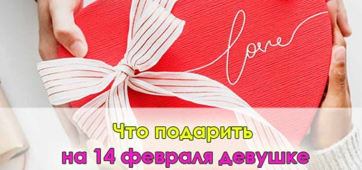 Что подарить на 14 февраля девушке